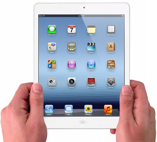 ��� ����� ������� �������� Apple iPad mini (�����)